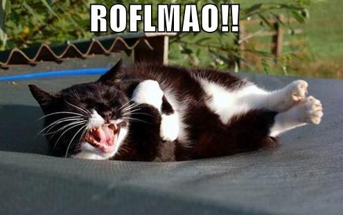 """Que significan """"ROFL"""" y """"LMAO""""?"""
