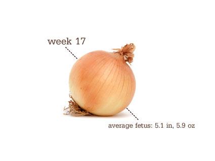 Pregnant Fruit 78