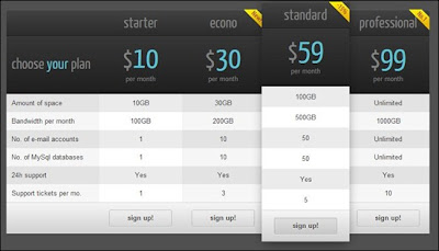 CSS3 Web Pricing Tables Grids