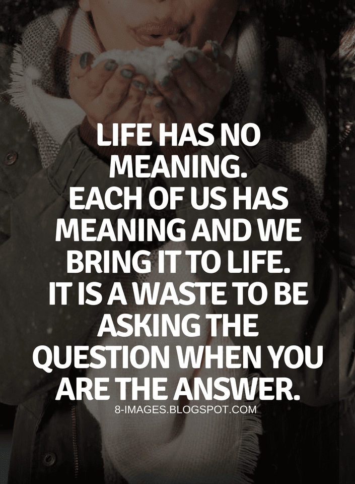 Meaning Of Life Quotes Life Has No Meaning Each Of Us Has Meaning Extraordinary Meaning Of Life Quotes