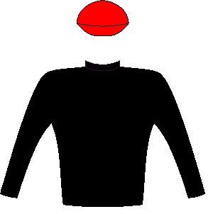 Majestic Mambo - Silks - Owner: Wilgerbosdrift (Pty) Ltd (Nom: Mrs M Slack) & Hyperpaint Syndicate (Nom: Mr G T Peter) - Colours: Black, scarlet cap
