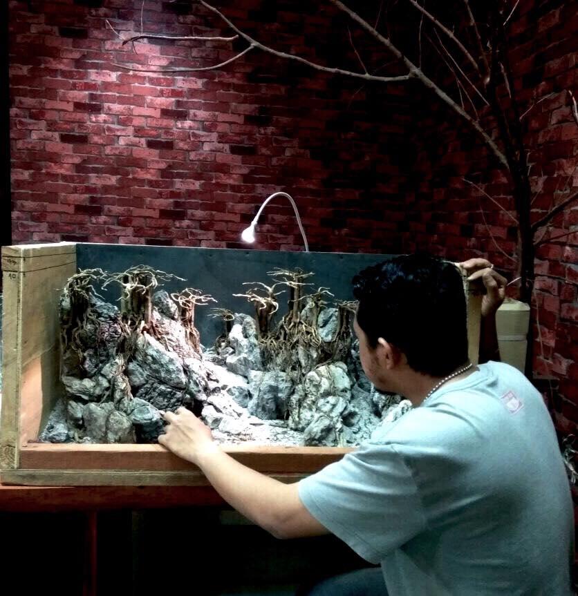 Ý tưởng làm hồ thủy sinh suối thác - Indra Bob Wijaya