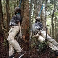 hutan aokigahara di jepang tempat favorite orang orang untuk melakukan bunuh diri