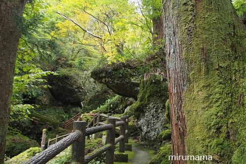 小路から見える大きな岩
