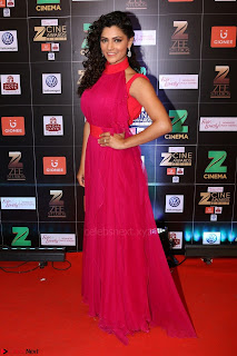 Bollywood Celebrities on the Red Carpet Of Zee Cine Awards 2017 Exclusive 066.JPG