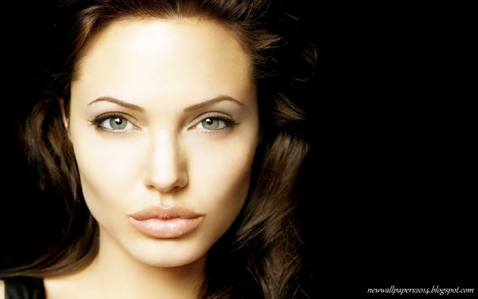 Angelina Jolie News: Angelina Jolie HD Wallpapers