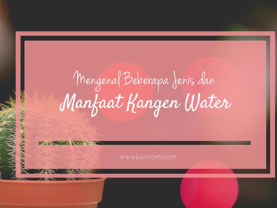 Mengenal Beberapa Jenis dan Manfaat Kangen Water