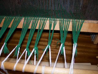 Warp bunches laced to front cloth beam.