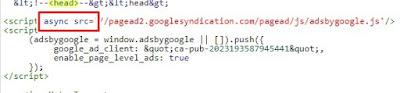 script kode page level ads sebelum dirubah