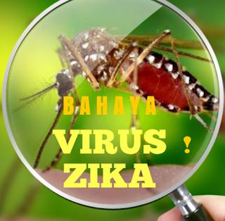 Mengenal Virus Zika dan Gejala yang Ditimbulkan