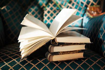 Libros para sobrellevar la oscuridad con ocio
