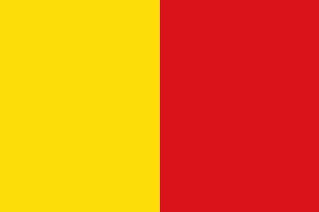 bandera oro y grana pichincha
