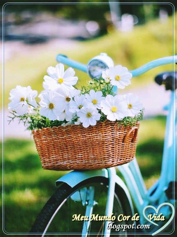 levando flores