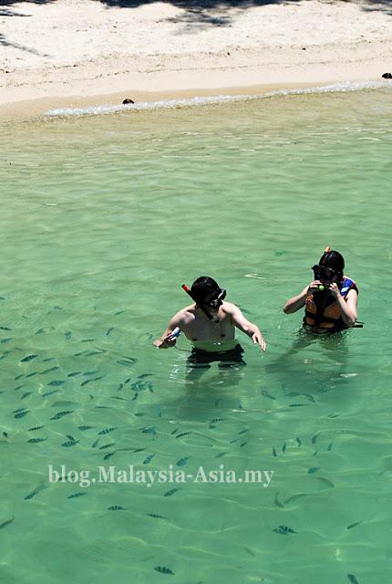 Snorkeling at Manukan Island