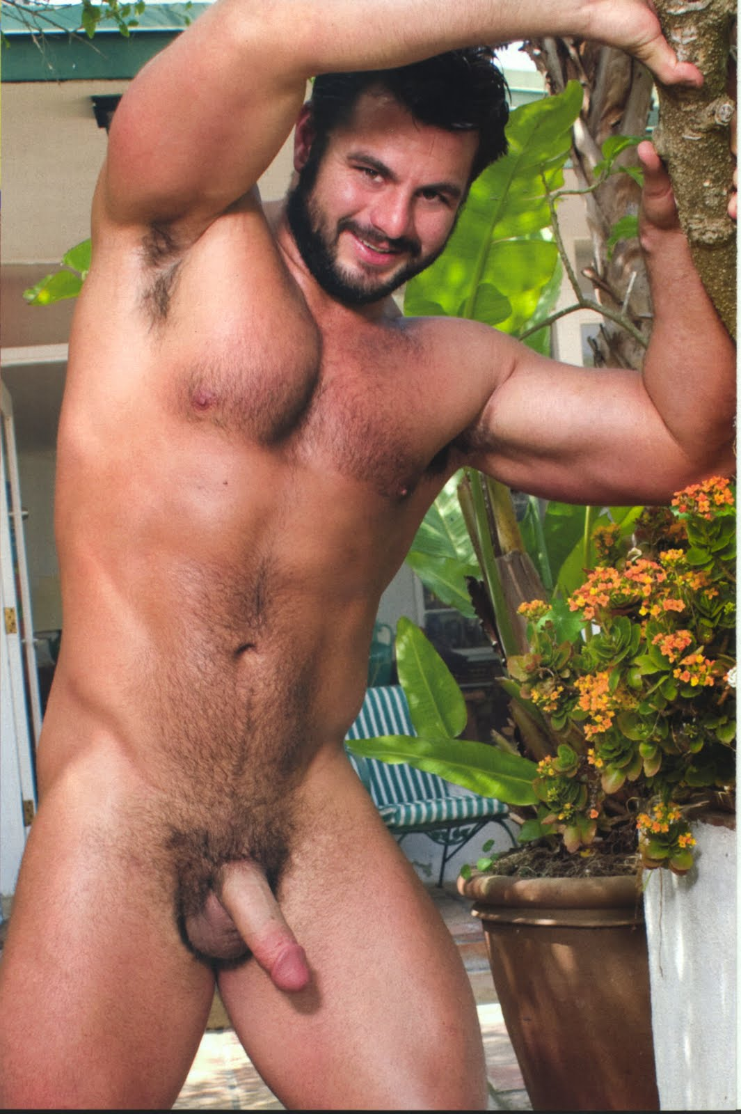 Hairy Bear Men Nude