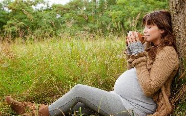 فوائد الزعتر للحامل