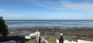 Desaparece el mar en campeche México.