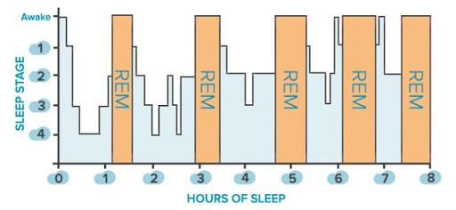 rem sleep paralysis