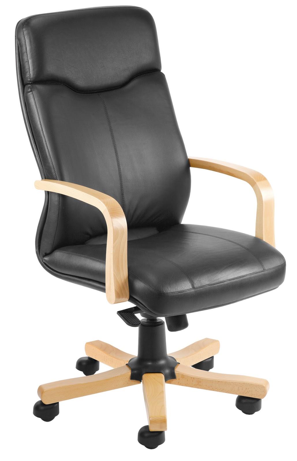 Kamila Meble Krzesła Biurowe Fotel Gabinetowy Rapsody