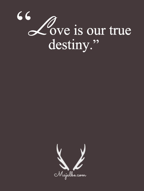 Love Is Our Destiny