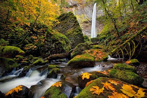 Stunning Elowah Falls, Columbia River Gorge, Oregon, USA