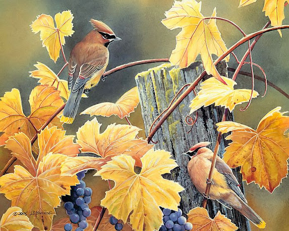 Fall Bird Pastel by Susan Jenkins |Fall Bird Paintings