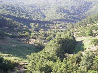 naturaleza en el valle del jerte