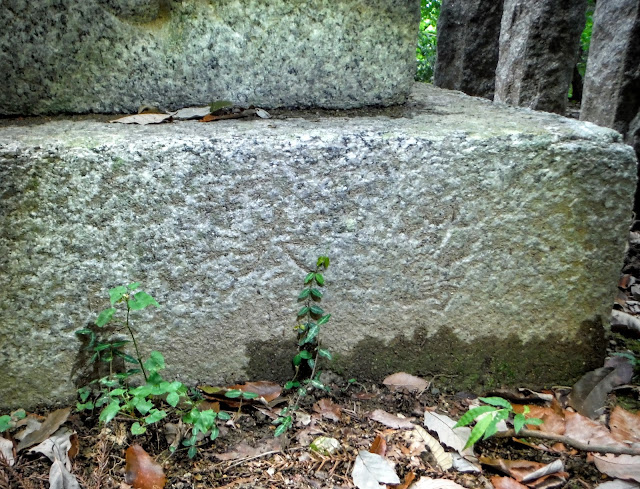 三昧尾石造十三重塔