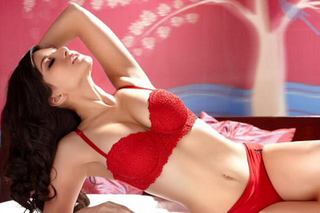 Gift romantic lingerie to your loce one on this valentine's