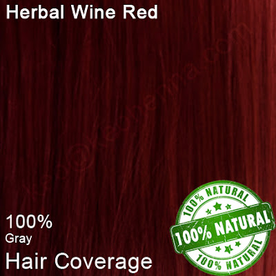 Herbal Wine Red on Grey Hair