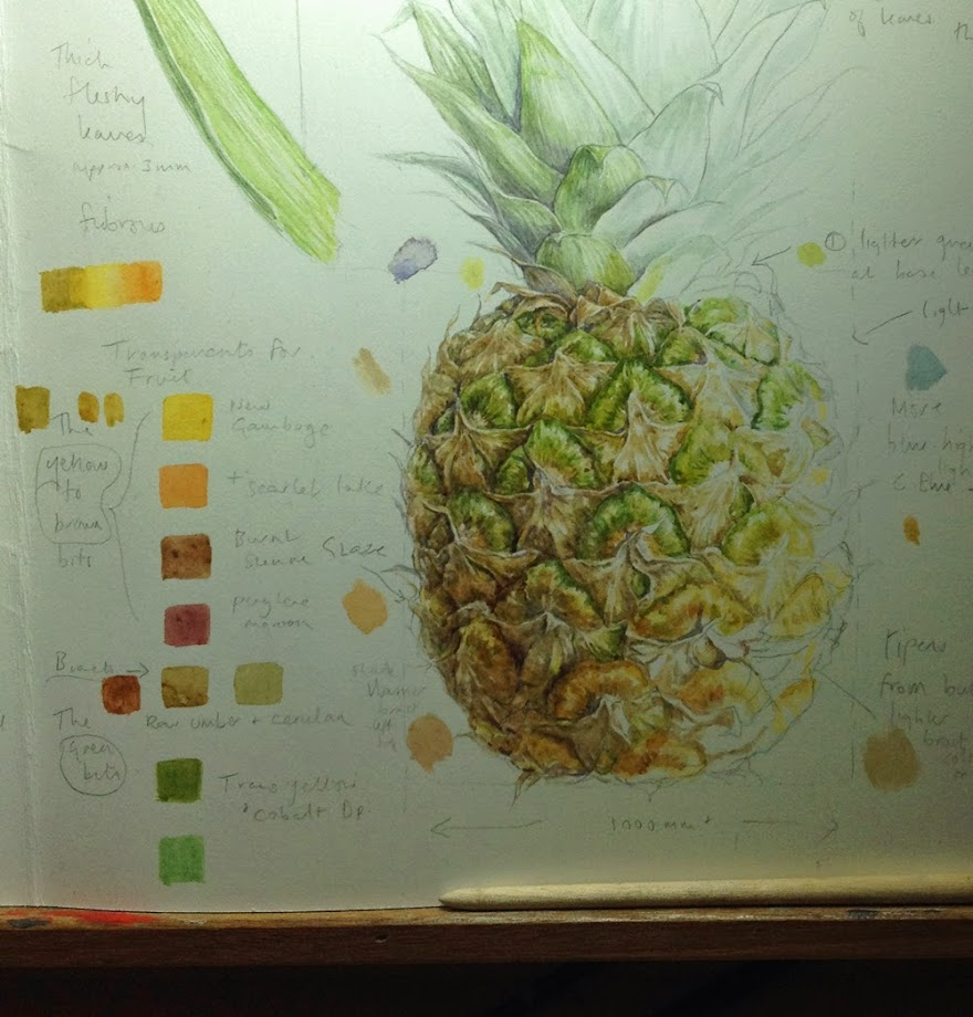 Pineapple study page