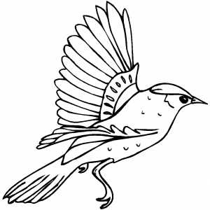 free printable birdhouse coloring pages | Kids Page: Birds Coloring Pages | Printable Birds Coloring ...