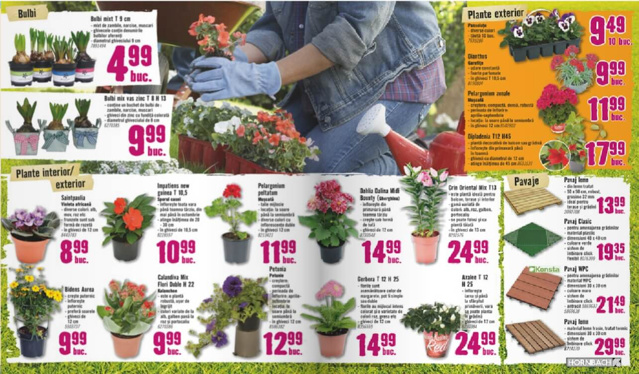 Catalog hornbach cu materiale de construit i plante for Catalogue de plantes