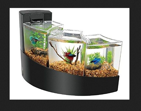 Harga Jenis Aquarium Mini Filter