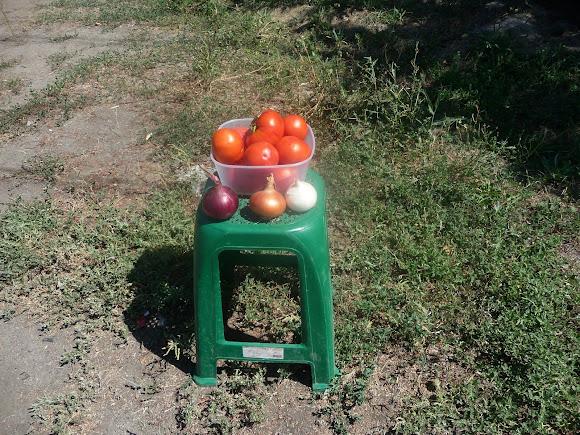 Васильковка. Район Низ. Улица Соборная. Продаются овощи