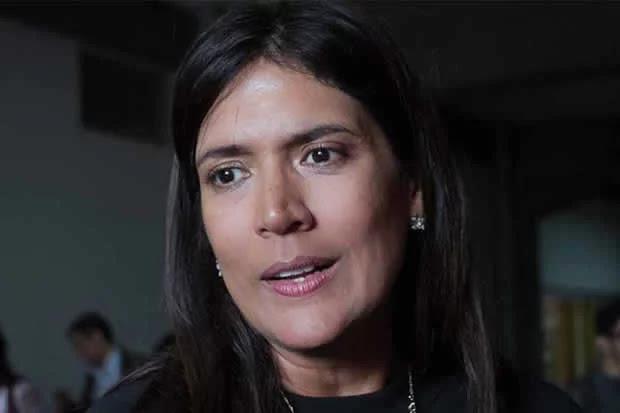 Herrera: Falta de atención a la crisis de malaria complica la solución del problema