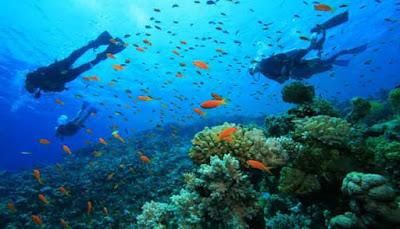 Taman Laut Pulau Sangalaki