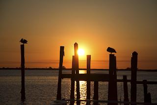 Panacea Sunrise