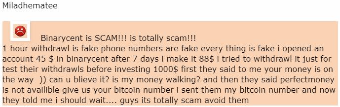 Отзыв от клиента Miladhematee