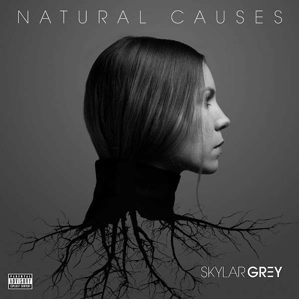 Skylar Grey - Natural Causes Cover