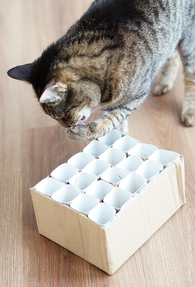 Extrem aentschies Blog: Katzenspielzeug Fummelkiste DIY SU56