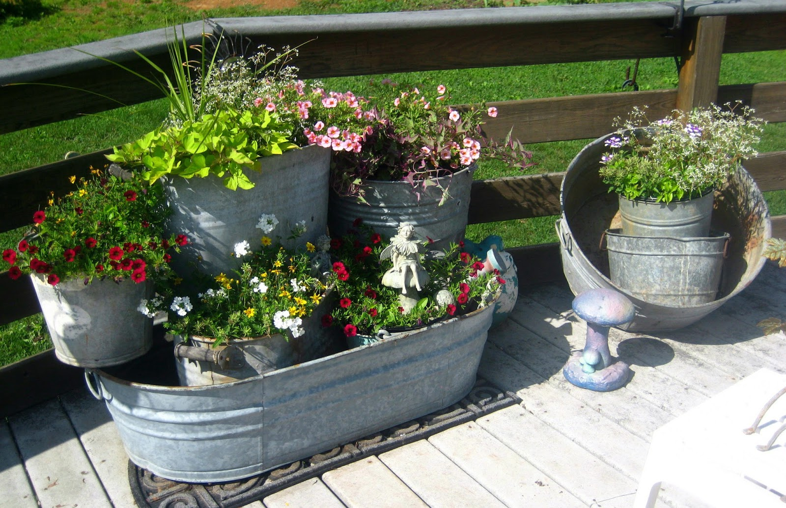 Meadow muffin gardens annual flowers for container gardening annual flowers for container gardening izmirmasajfo