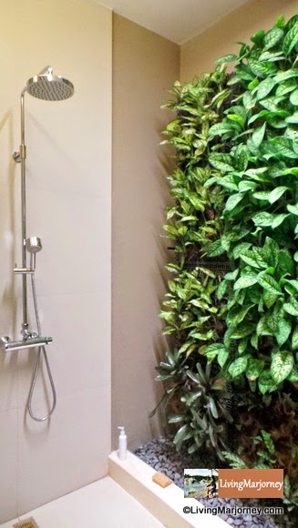 Vertical Garden/ Wall Plants at Vietura