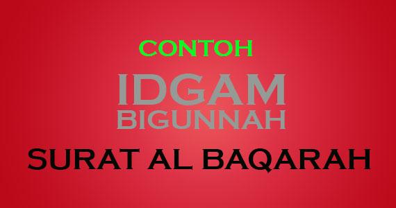 Td Informasi Contoh Idgam Bigunnah Di Surat Al Baqarah