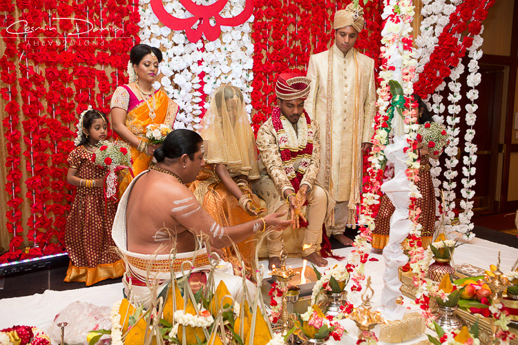 Sri lankan marriage