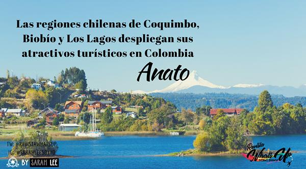 regiones-chilenas-Coquimbo-Biobío-Los-Lagos-atractivos-turísticos-Colombia
