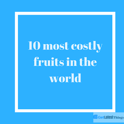 10 most costly fruits in the world ezfreeway - Five of the most expensive fruits in the world ...