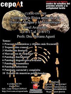 Nuevos cursos en CEPOAT (Verano 2017)