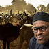 Cattle herdsmen as the new Boko Haram? By Reuben Abati