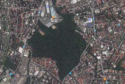Bosque da Freguesia